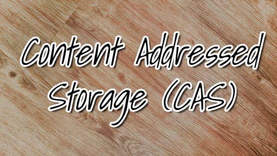 Content Addressed Storage (CAS)